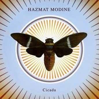 hazmat-modine-cicada