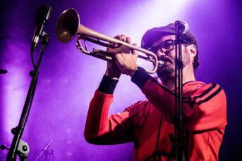 Etienne Sevet The Bongo Hop
