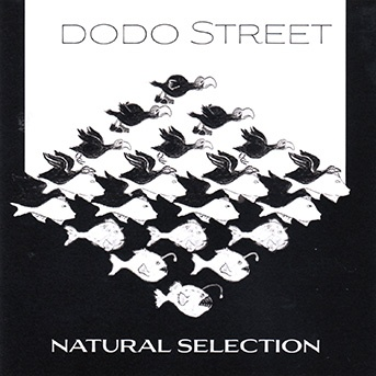 Dodo Street